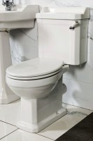 New Hampshire Traditional Toilet (NHAM-TT)