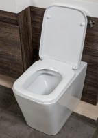 Esk Back To Wall Toilet (15383)