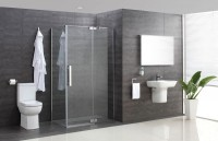 Minimo Hinged Shower Door (900mm) (17984)